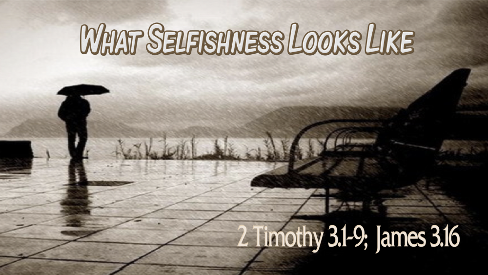 What Does Selfishness Look Like