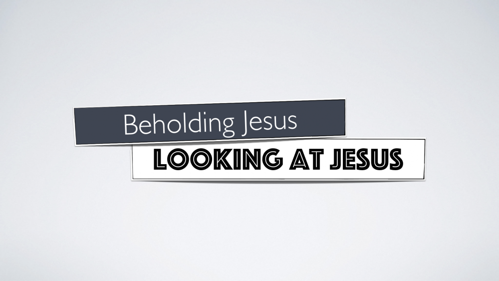 Sir, We Would See Jesus - Beholding Jesus Image